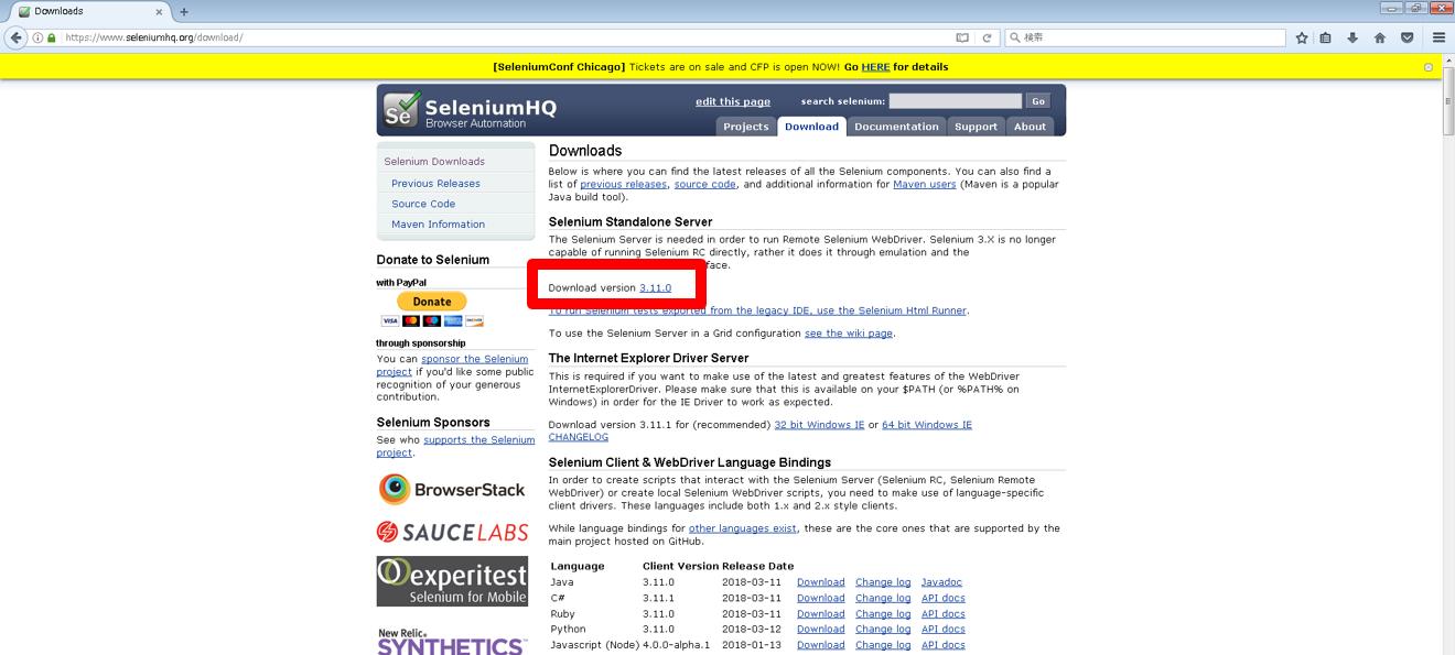 selenium standalone server